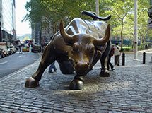 Famous bull, New York City, USA